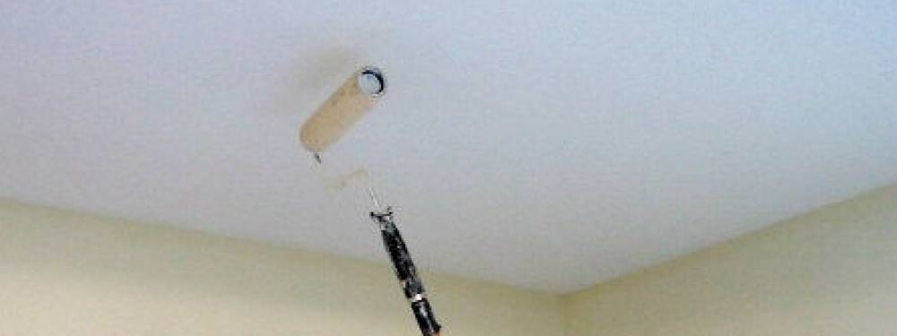 PeraHome - PVA Smooth - Pera Ceiling Paint